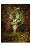 Fairy 17 Art Print