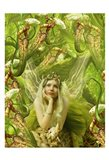 Fairy 22 Art Print