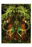 Fairy 38 Art Print