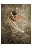 Winged Fairie I Art Print