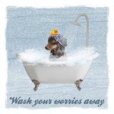 Worry Wash Art Print