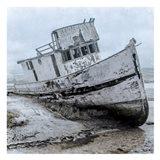 Shipwrecked Minnow 1 Art Print