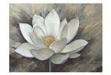 Magnolia Hope 2 Art Print