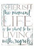 Cherish Life Art Print