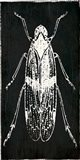 Bug Life One Black Art Print