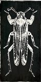 Bug Life Four Black Art Print