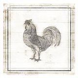 Modern Rooster Art Print