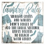 Laundry Rules Separate Art Print