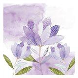 Purple Delight 1 Art Print