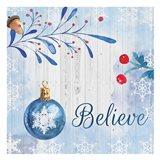 Christmas Believe Art Print
