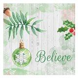 Christmas Believe Green Art Print