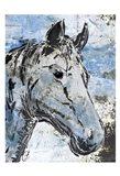 Sketched Rustic Horse Art Print