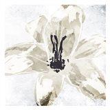 Sketched Cream Flower Art Print