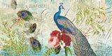 Peacock Blue 1 Art Print