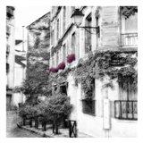 Eggplant RuePoulbo Art Print