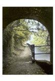 Shrewley Tunnel Art Print