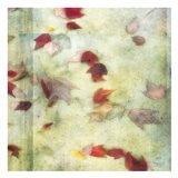 Fall Leaves 1 Art Print