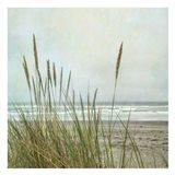 North Coast Dunes 2 Art Print