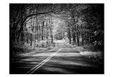 Country Road 1 Art Print