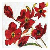 Poppy Reds Art Print