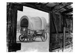 Carriage In The View Art Print