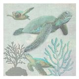 Turtles 2 Art Print