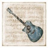 Acoustic Blues Art Print