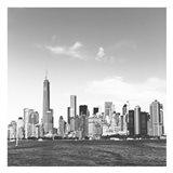 Fly NY Art Print