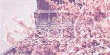 Eiffel Blossoms Art Print