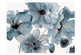 Blue Poppy Bouquet Art Print