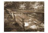 Eddys Bridge Art Print