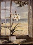 Ocean Amaryllis Art Print