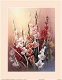 Gladiola Art Print