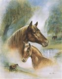 Brown Mare And Fowl Art Print