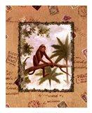 Bermuda Paradise II Art Print