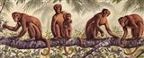 Monkey Time II Art Print