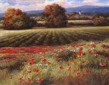 Fields of Provence II Art Print