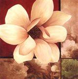 Magnolia Collage Art Print