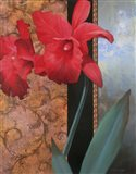 Lily Red/Teal Damasque Art Print
