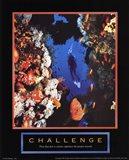 Challenge - Diver Art Print