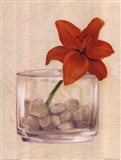 Red Flower In Bowl With Rocks Art Print