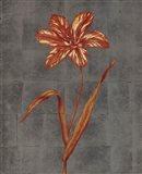 Orange Flower - full bloom Art Print