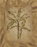 Leaves - brown Art Print