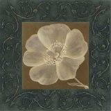 Tan Flower - full bloom Art Print