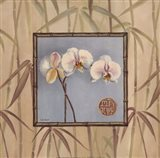Orchid Spa III Art Print