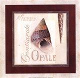 Opale Art Print