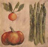 Asparagus Radish Art Print