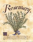 Rosemary Art Print
