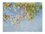 Wisteria - blue Art Print