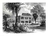 Planter's House on the Mississippi Art Print